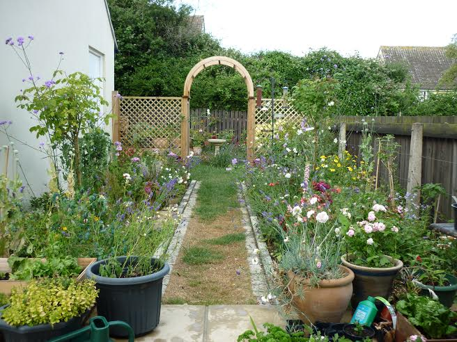 A Day in the Life of bestselling author MARGARET GRAHAM garden5