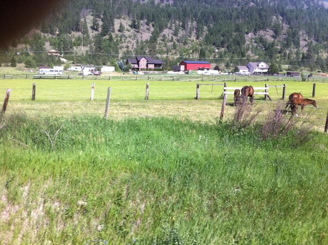 pic 3 prairie Calgary - Rockies