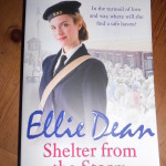 Shelter-from-the-Storm-Ellie_Dean