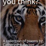 poetry, poetry books, poet, female, women, Catherine Balavage, what do you think? writer